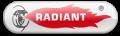 Caldaie Radiant Triste